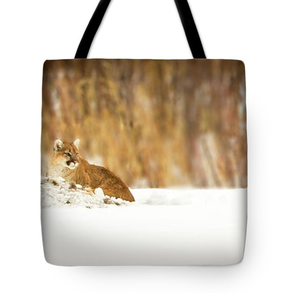 Rivers Treasure  Tote Bag