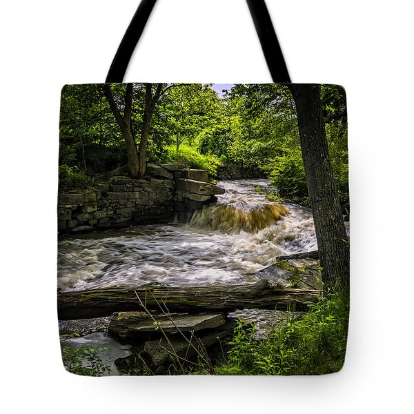 Tote Bag featuring the photograph Riverside by Mark Myhaver