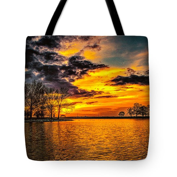 Tote Bag featuring the photograph Riverview Beach Park Sunset by Nick Zelinsky