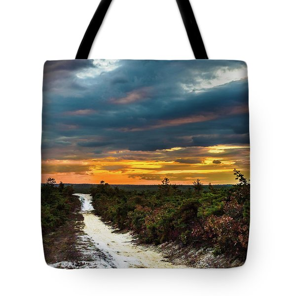 Tote Bag featuring the photograph Road Into The Pinelands by Louis Dallara