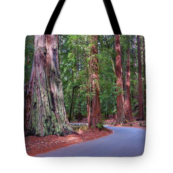Road Through Redwood Grove Tote Bag