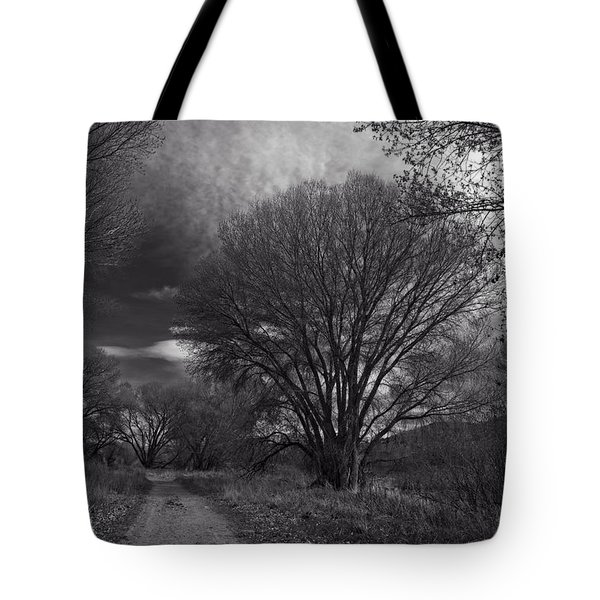 Road Through The Cottonwoods Tote Bag