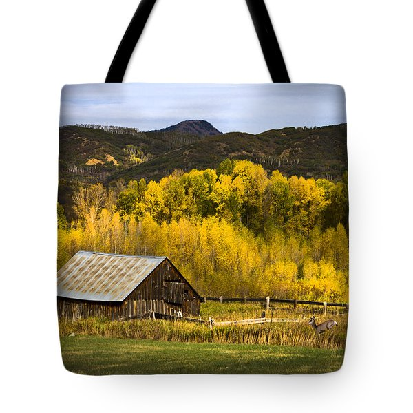 Tote Bag featuring the photograph Road To Steamboat Lake by John Hix