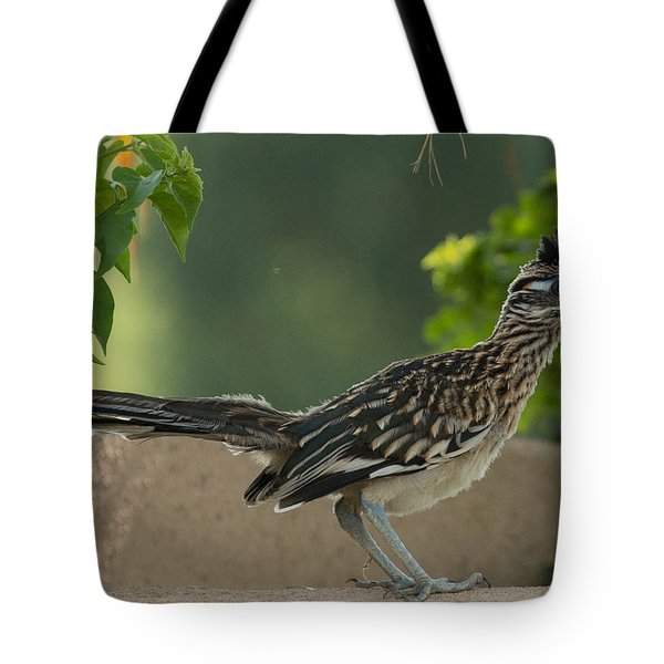 Roadrunner Closeup Tote Bag