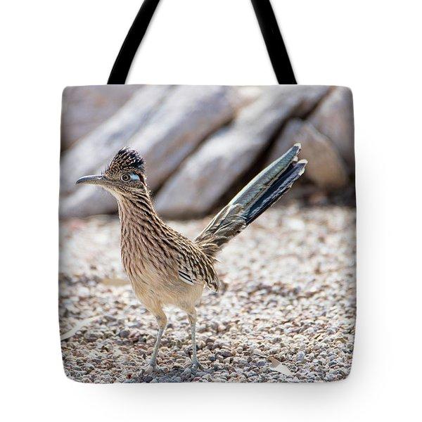 Tote Bag featuring the photograph Roadrunner Hunting by Dan McManus