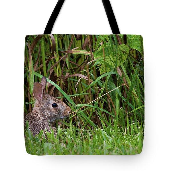 Roadside Rabbit Tote Bag