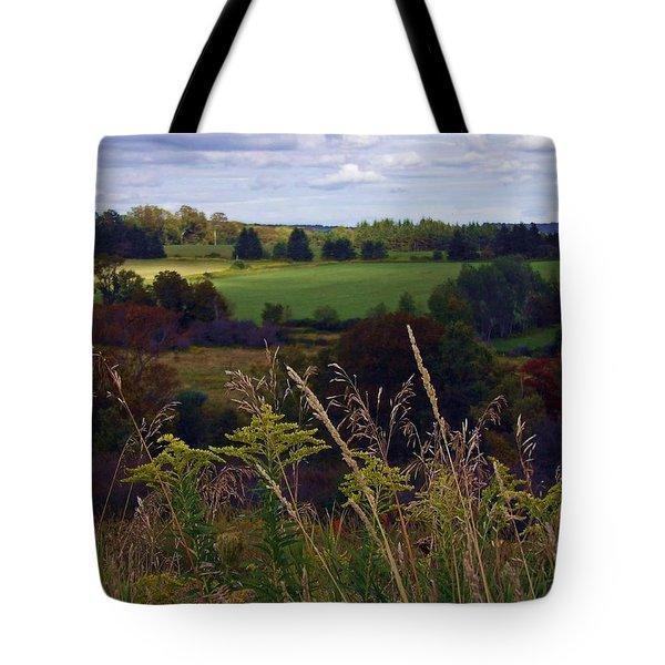 Roadside Wanderings Tote Bag