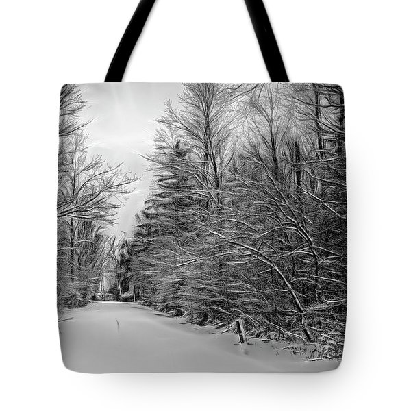 Roadway To The Lake Tote Bag