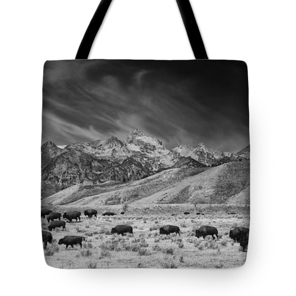 Roaming Bison In Black And White Tote Bag
