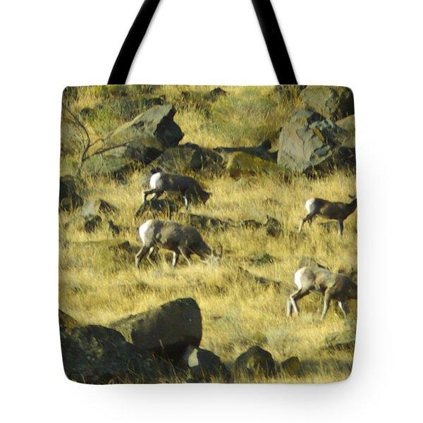Roaming Free Tote Bag by Dale Stillman