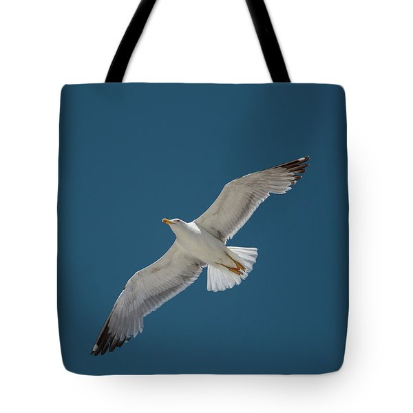 Roaming The Sky Tote Bag