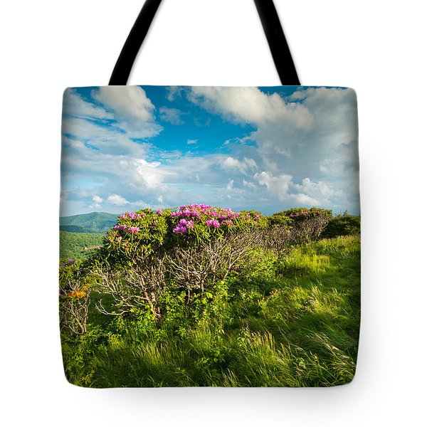 Roan Highlands Grassy Ridge Appalachian Trail Tote Bag by Rick Dunnuck