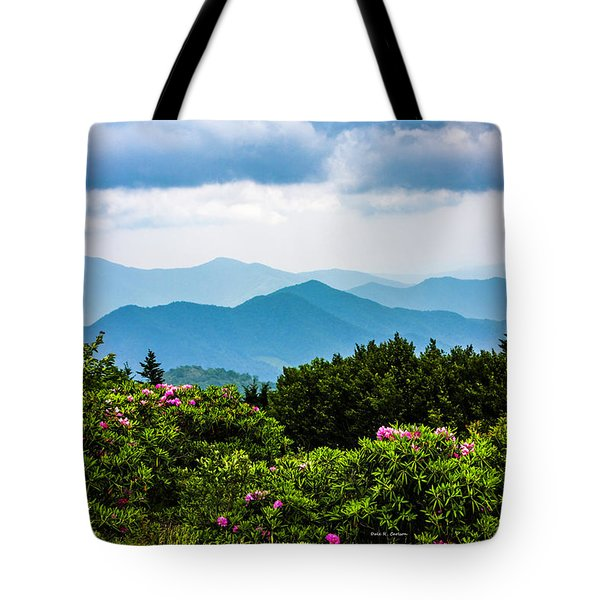 Roan Mountain Rhodos Tote Bag by Dale R Carlson