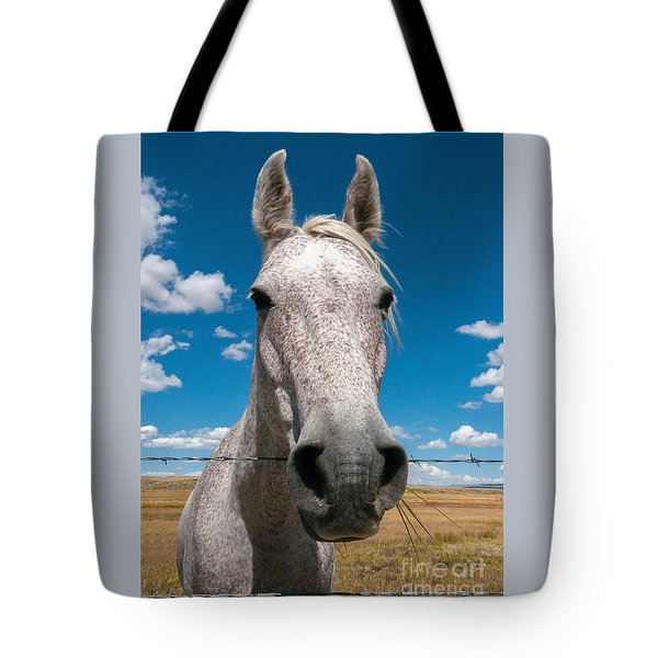 Tote Bag featuring the photograph Roan by Sharon Seaward