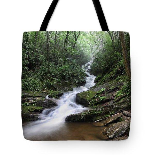 Roaring Fork Falls Tote Bag