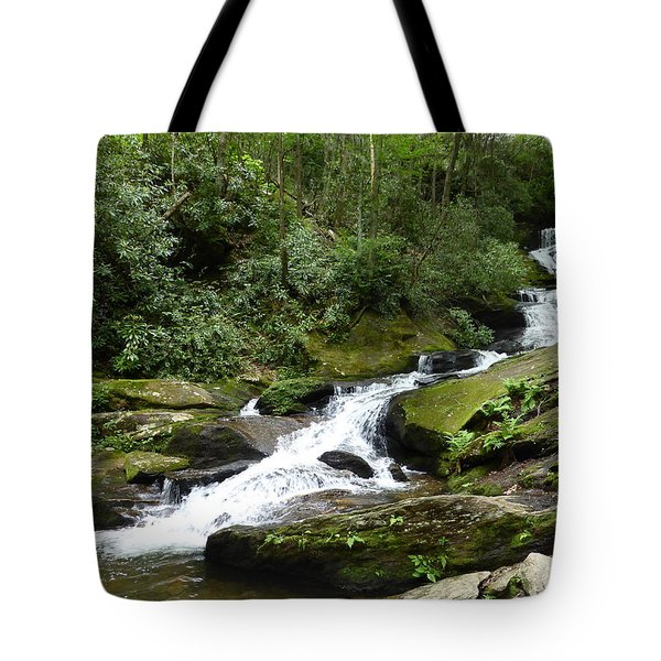 Tote Bag featuring the photograph Roaring Fork Falls June 2017 by Joel Deutsch
