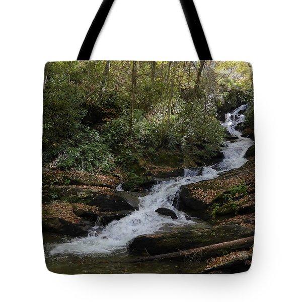 Roaring Fork Falls - October 2015 Tote Bag