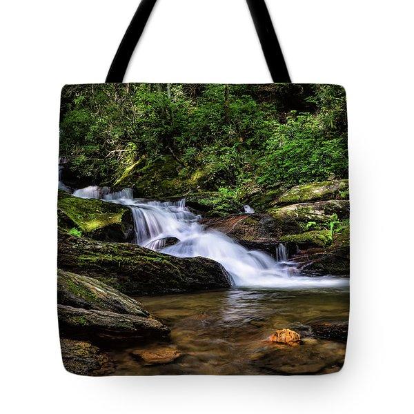 Roaring Fork Waterfall Tote Bag
