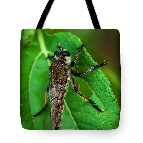 Robber Fly 1 Tote Bag