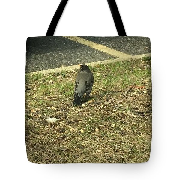 Robin At The Ymca  Tote Bag