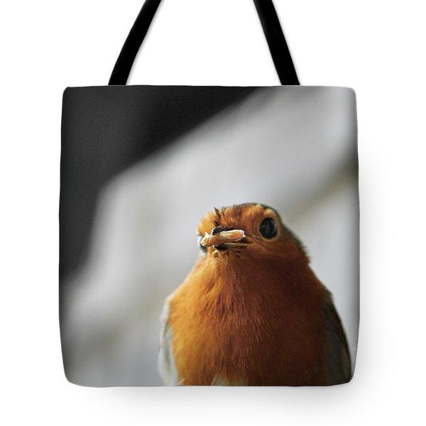 Robin Closeup Tote Bag