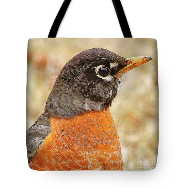 Tote Bag featuring the photograph Robin by Debbie Stahre