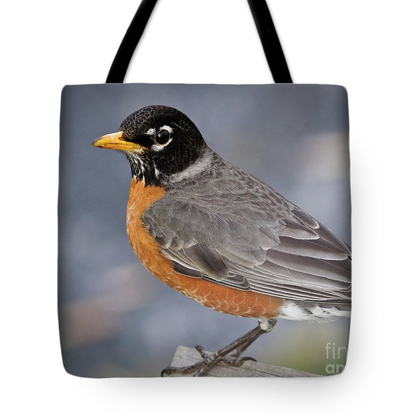 Tote Bag featuring the photograph Robin by Douglas Stucky