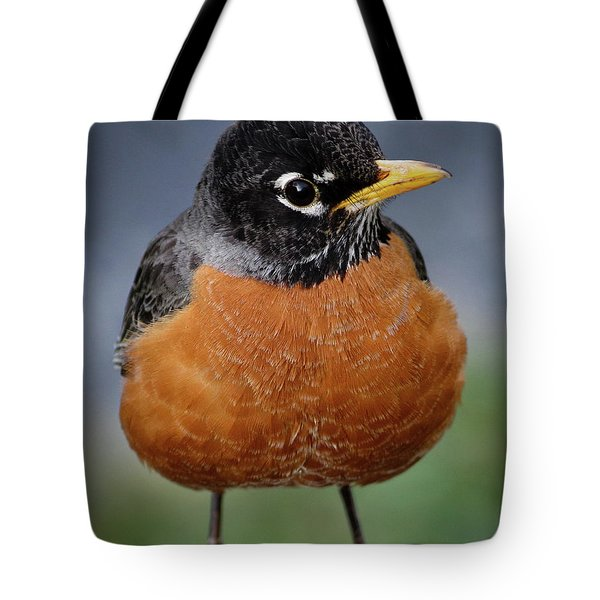 Tote Bag featuring the photograph Robin II by Douglas Stucky
