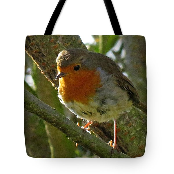 Robin In A Tree Tote Bag