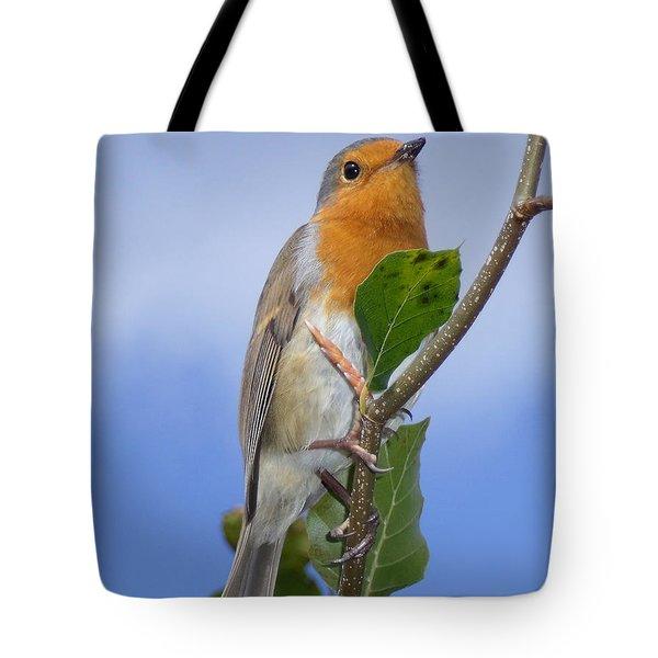 Robin In Eden Tote Bag