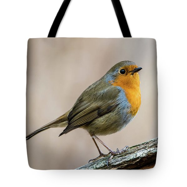 Robin In Spring Tote Bag by Torbjorn Swenelius