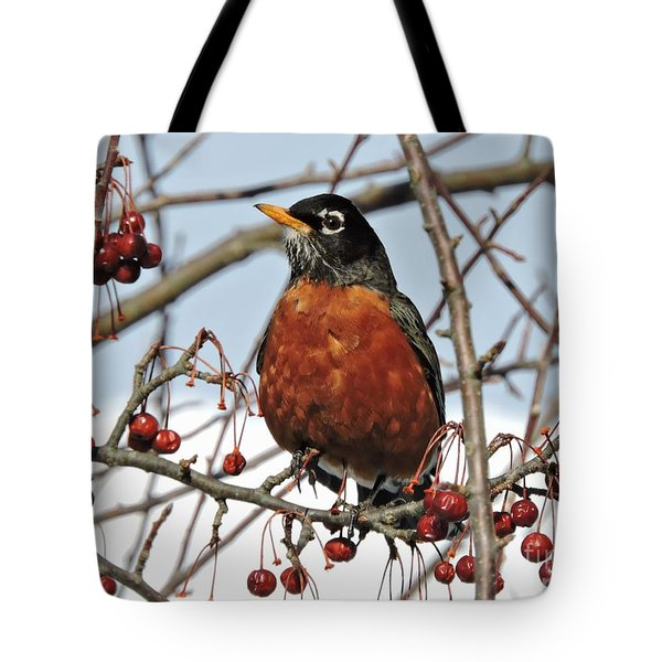 Robin In Winter Tote Bag