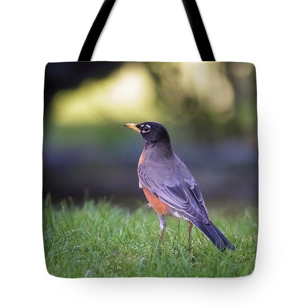 Tote Bag featuring the photograph Robin by Kathy King