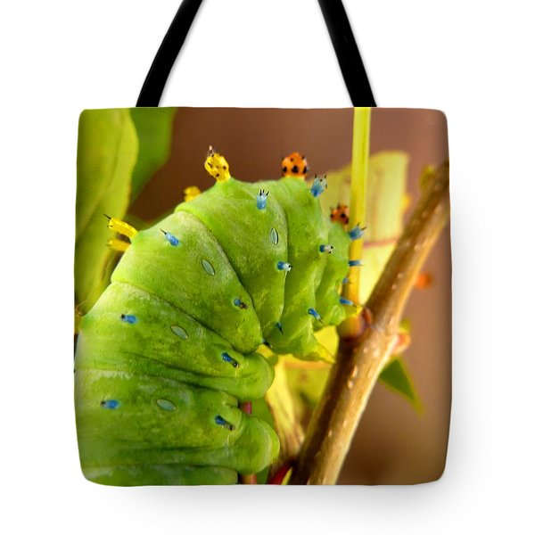 Tote Bag featuring the photograph Robin Moth Caterpillar by Claire Bull