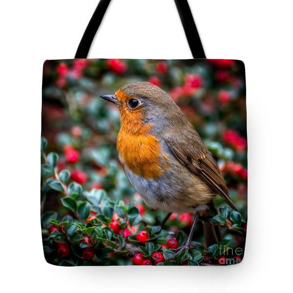 Tote Bag featuring the photograph Robin Redbreast by Adrian Evans