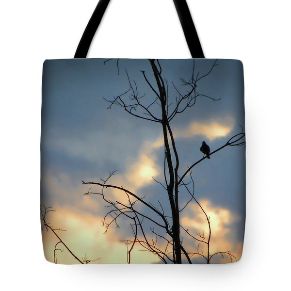 Tote Bag featuring the photograph Robin Watching Sunset After The Storm by Sandi OReilly
