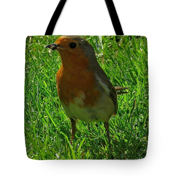 Robin1 Tote Bag by John Topman