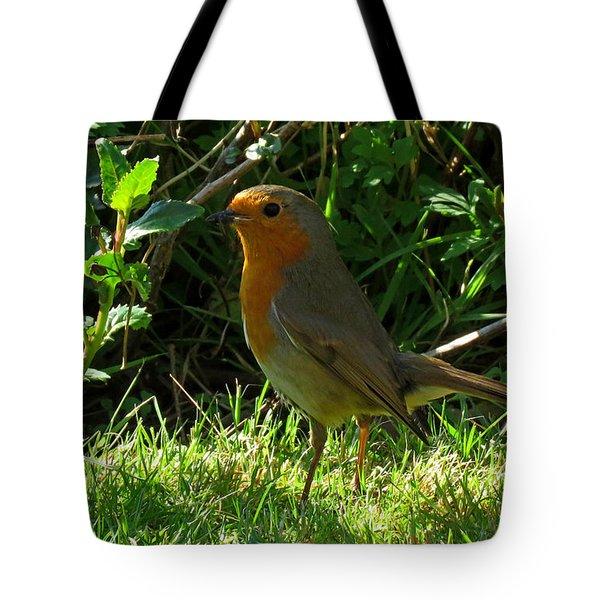 Robin2 Tote Bag by John Topman