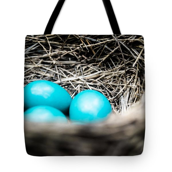 Robin's Eggs Tote Bag by Shelby  Young