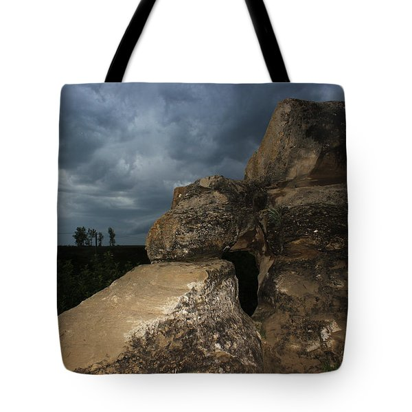 Roche Percee Peak Tote Bag by Ryan Crouse