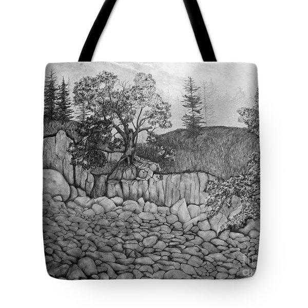 Rock Beach Tote Bag by John Stuart Webbstock