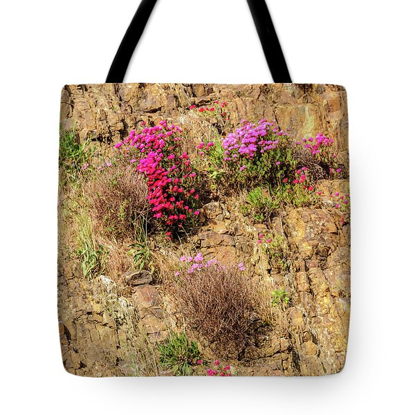 Rock Cutting 1 Tote Bag