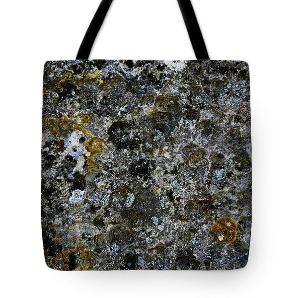 Rock Lichen Surface Tote Bag by Nareeta Martin
