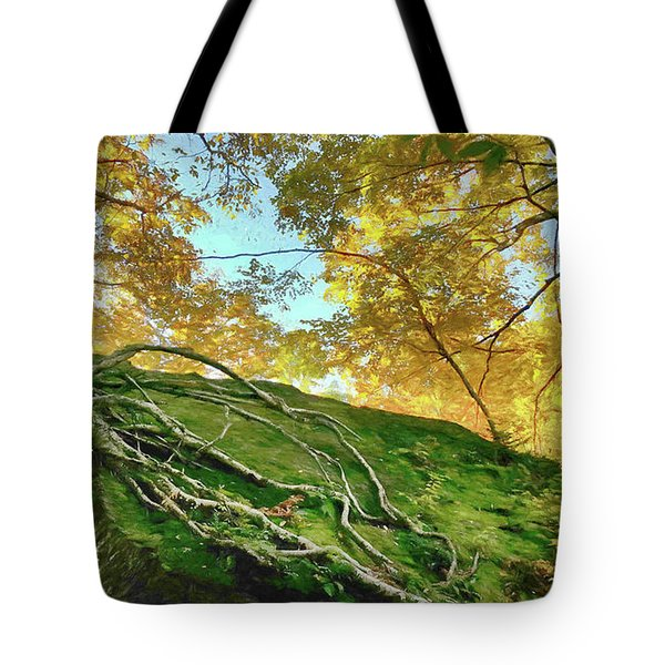 Tote Bag featuring the photograph Rock Of Ages by Jeff Folger