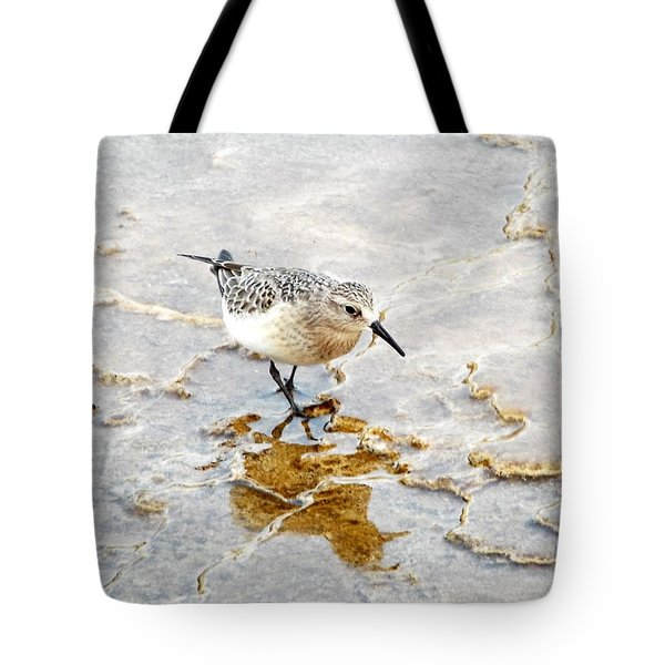 Rock Wren In Mammoth Springs Yellowstone Tote Bag