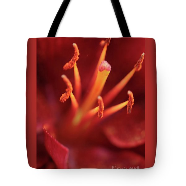 Rocket Lily Tote Bag