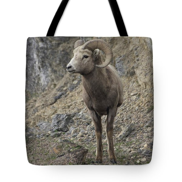 Rockies Big Horn Tote Bag