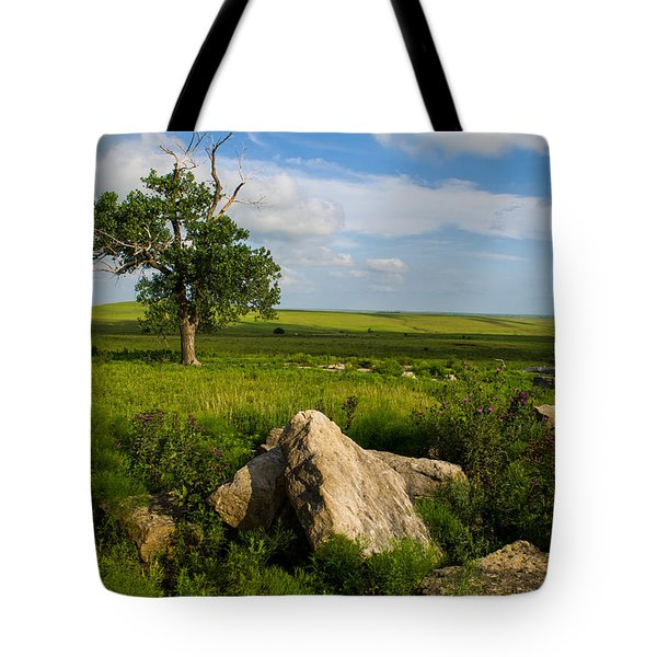 Tote Bag featuring the photograph Rocks And Cottonwood 1 by Jeff Phillippi