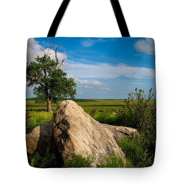 Tote Bag featuring the photograph Rocks And Cottonwood 2 by Jeff Phillippi