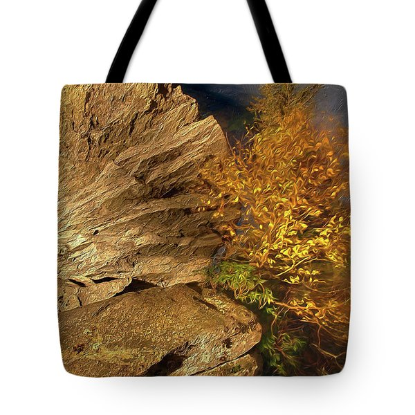 Tote Bag featuring the painting Rocks And Fall Colors At Night In The Blue Ridge Ap by Dan Carmichael